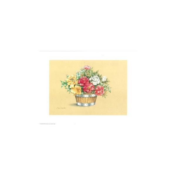 Image 3D - astro 520 - 24x30 - bouquet - Photo n°1