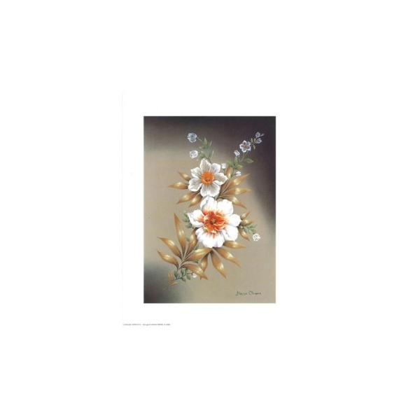 Image 3D - astro 110 - 24x30 - 2 fleurs blanches - Photo n°1