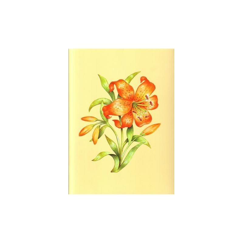 Image 3D - astro 387 - 24x30 - lys orange - Photo n°1