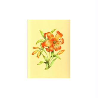 Image 3d - astro 387 - 24x30 - lys orange