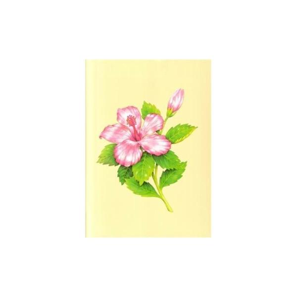 Image 3D - astro 388 - 24x30 - hibiscus rose - Photo n°1