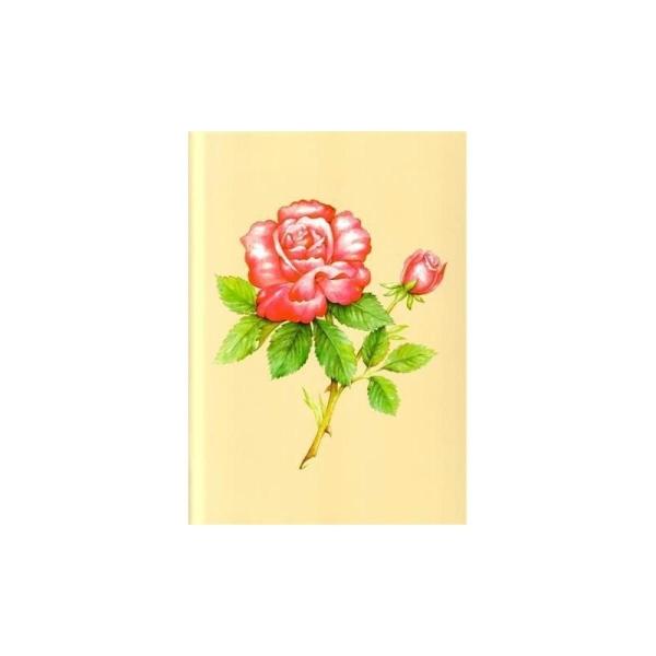 Image 3D - astro 390 - 24x30 - rose rose - Photo n°1