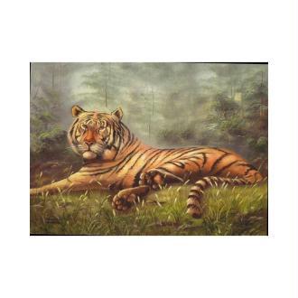 Image 3D - 9207165 - 24x30 - tigre couche