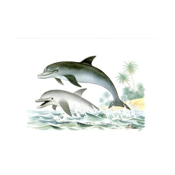 Image 3D - pa 55 - 24x30 - les dauphins - Photo n°1