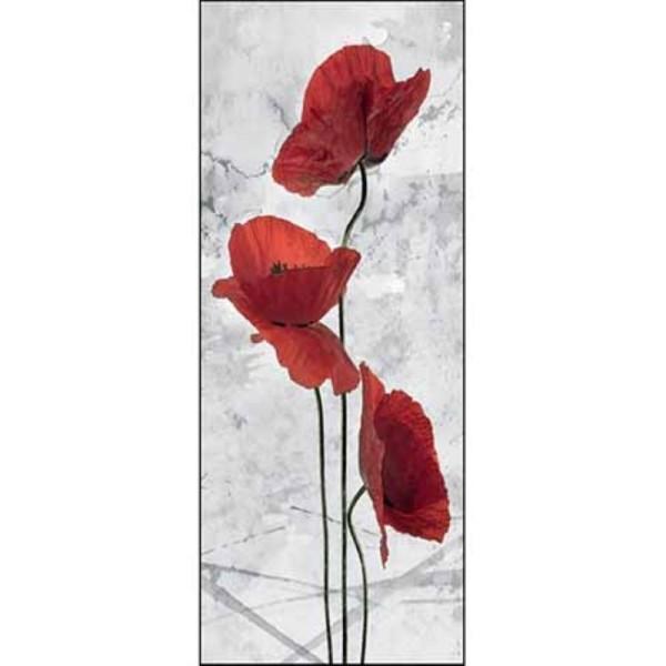 Image 3D - dm257878 - 20x50 - coquelicot rouge papier brillant - Photo n°1