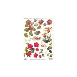 Carte 3D prédéc. - A4 - 82111- fleurs rouges et jaune