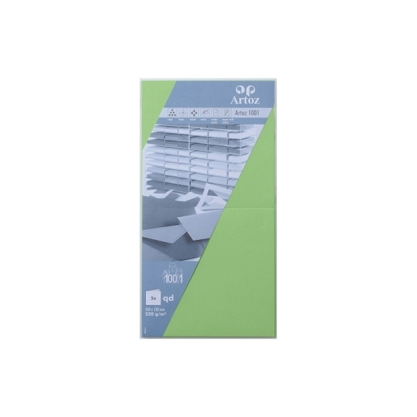 Carte carrée 260x130 220g paquet de 5 vert bouleau - Photo n°1