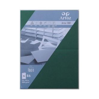 Carte double E6 250x180 220g paquet de 5 - racing gree