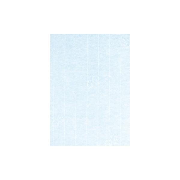 Carte 310x155 220g paquet de 5 - aqua - Photo n°1