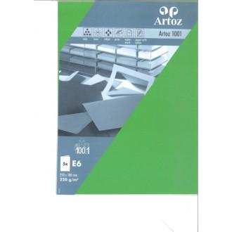 Carte double E6 250x180 paquet de 5 - vert de mai
