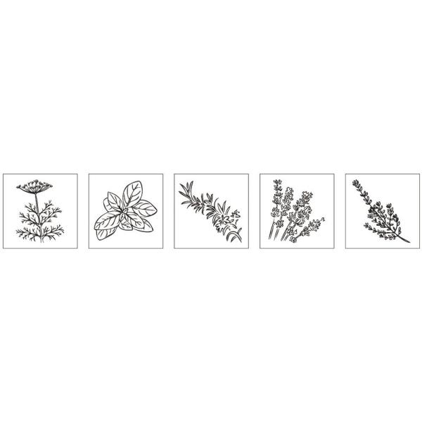 Kit mini-tampons bois - Herbes aromatiques - Photo n°2