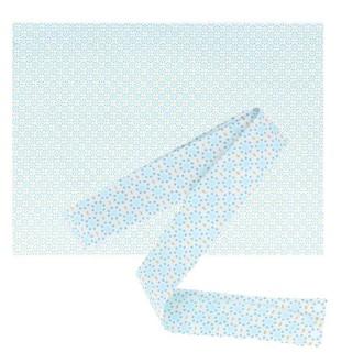 Tissu 55 x 45 cm & biais de couture 3 m x 2 cm - Ronds bleu clair à pointillés bleus