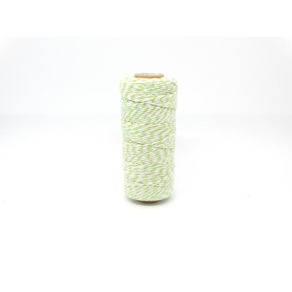 Ficelle bicolore Baker'sTwine - May arts - Vert Clair - Photo n°1