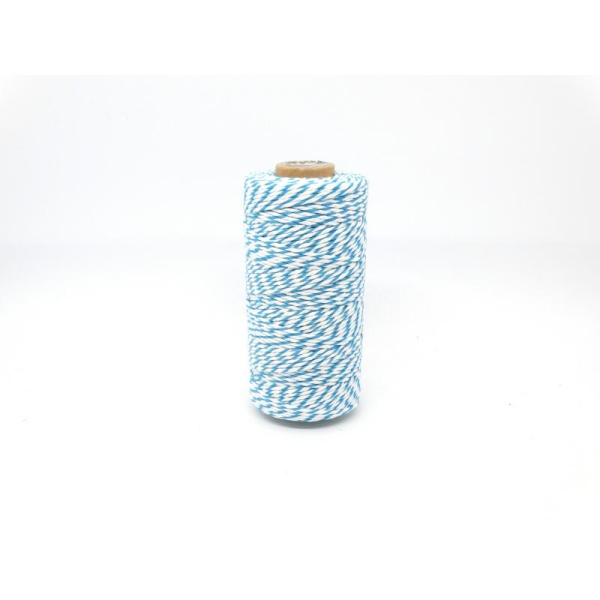 Ficelle bicolore Baker'sTwine - May arts - Bleu turquoise - Photo n°1