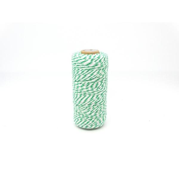 Ficelle bicolore Baker'sTwine - May arts - Vert Foncé - Photo n°1