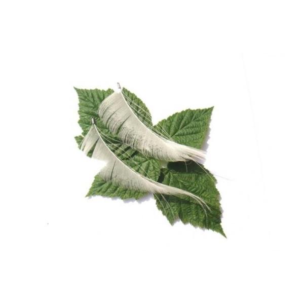 Paon Blanc : Paire de pendentifs