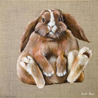 Image 3D Animaux - Lapin assis - 30 x 30 cm