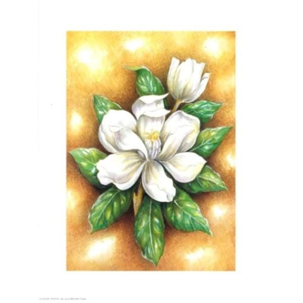 Image 3D - astro 567 - 24x30 - Fleur blanche - Photo n°1