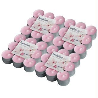 Bolsius Bougie Chauffe-plat Parfumée 72 Pcs Magnolia 103626949304