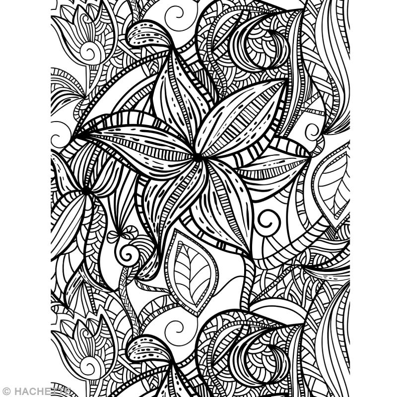 Livre coloriage adulte anti-stress - A4 - 100 coloriages - Livre coloriage adulte - Creavea