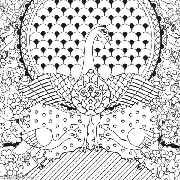 Livre Coloriage Adulte Anti Stress A4 Mandalas 100 Coloriages