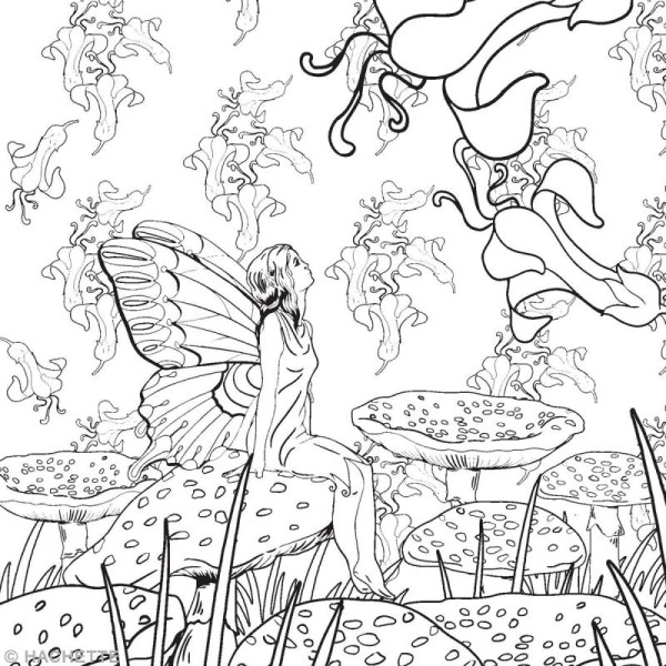 Coloriage Animaux Feeriques.Livre Coloriage Adulte Anti Stress Forets Feeriques A4 100 Coloriages