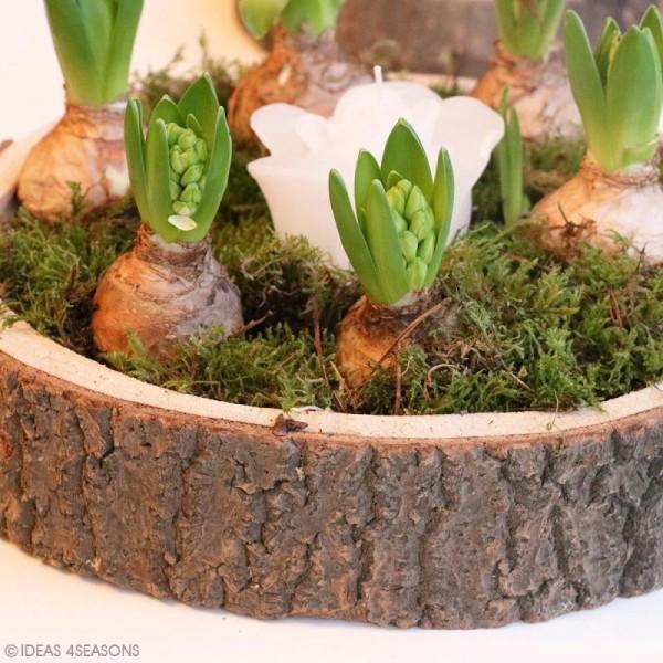 Coupelle en bois naturel - 20 x 5 cm - Photo n°5