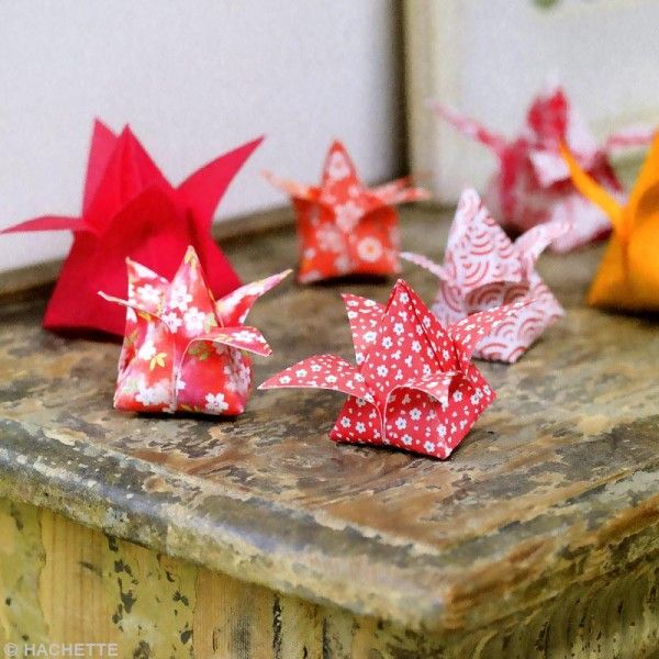 Livre Do It Yourself - Origami - Catherine Guidicelli - Photo n°2