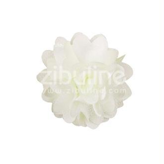 Fleur dentelle - Champagne