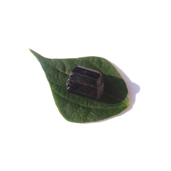 Pierre brute Tourmaline Noire du Brésil 2.5 CM x 1.7 CM de diamètre max (F) - Photo n°3