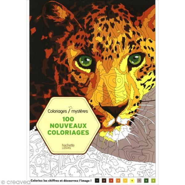 Coloriage Mystere Pour Adulte Tome 2 A4 100 Coloriages Au