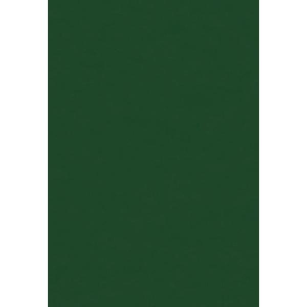 Papier de soie Vert sapin x 8 feuilles 50 x 75 cm - Photo n°1