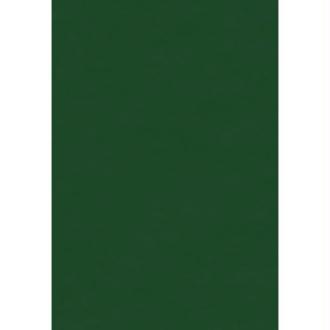 Papier de soie Vert sapin x 8 feuilles 50 x 75 cm