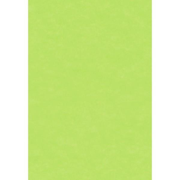 Papier de soie Vert pistache x 8 feuilles 50 x 75 cm - Photo n°1