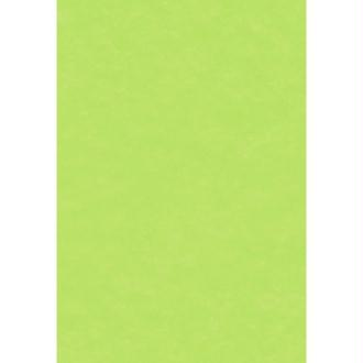 Papier de soie Vert pistache x 8 feuilles 50 x 75 cm