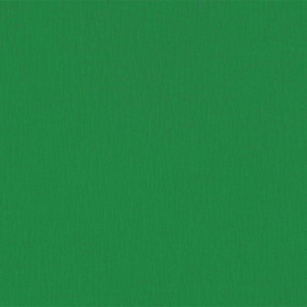 Papier crépon Vert 2,50 m x 0,50 m - Photo n°1