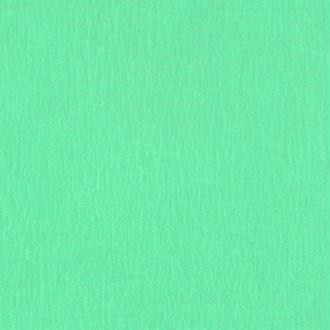 Papier crépon Vert pastel 2,50 m x 0,50 m