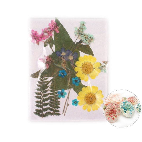 12pcs Chrysanthème Mélange Naturel Pressé de Fleurs Séchées de Feuilles de Plantes Sèches Époxy Rési - Photo n°1
