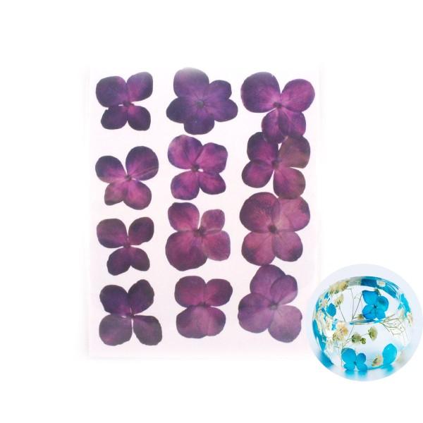 12pcs Violet Teint Pressé Séchées Hortensia Fleur de Plantes Sèches Époxy Résine UV Pendentif Nail A - Photo n°1
