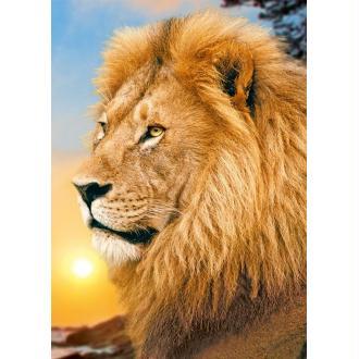 Broderie diamant kit- Lion King WD070- 27*38 cm