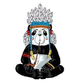 Broderie diamant kit- Hippie Panda WD216- 27*38 cm