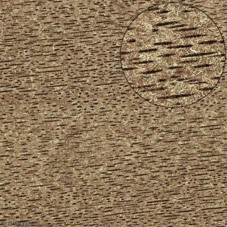 Papier scrapbooking Bazzill - Bois - Blanc - 30 x 30 cm