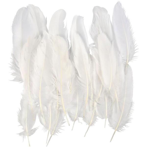 Plume d'oie 15 cm - Blanc - 70 pcs - Photo n°1