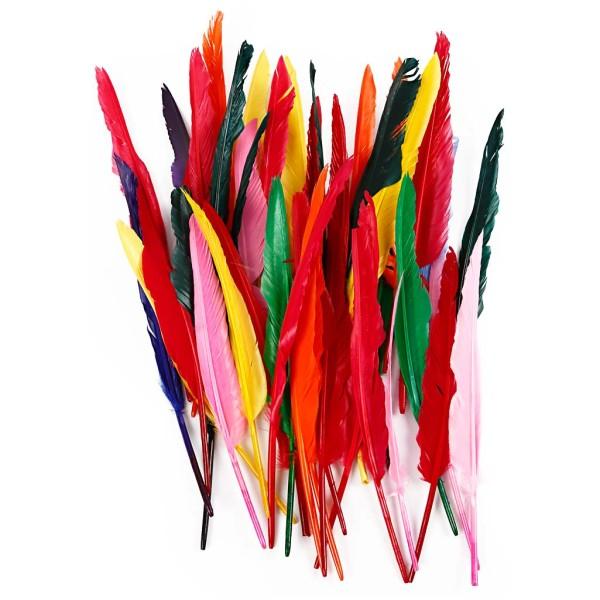Plume multicolore 29 à 31 cm - 100 pcs - Photo n°1
