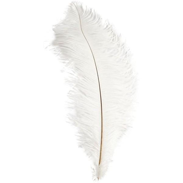 Grande plume d'Autruche blanche - 35/40 cm - Photo n°1