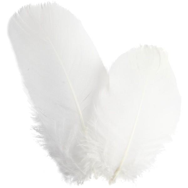 Plume d'oie rondes 8 cm - Blanc - 3 g - Photo n°1