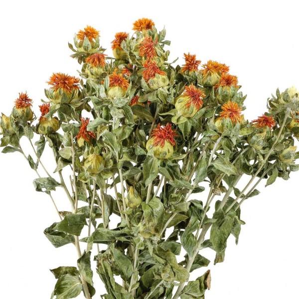 Bouquet fleurs séchées carthamus - 55 cm - Photo n°3