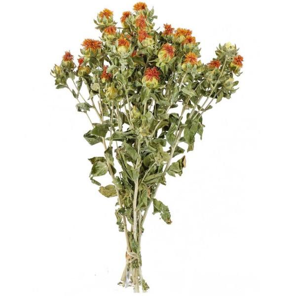Bouquet fleurs séchées carthamus - 55 cm - Photo n°1
