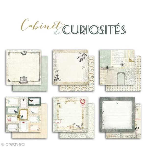Papier scrapbooking Recto/Verso Cabinet de curiosités - Set de 6 feuilles - 30,5 x 30,5 cm - Photo n°2