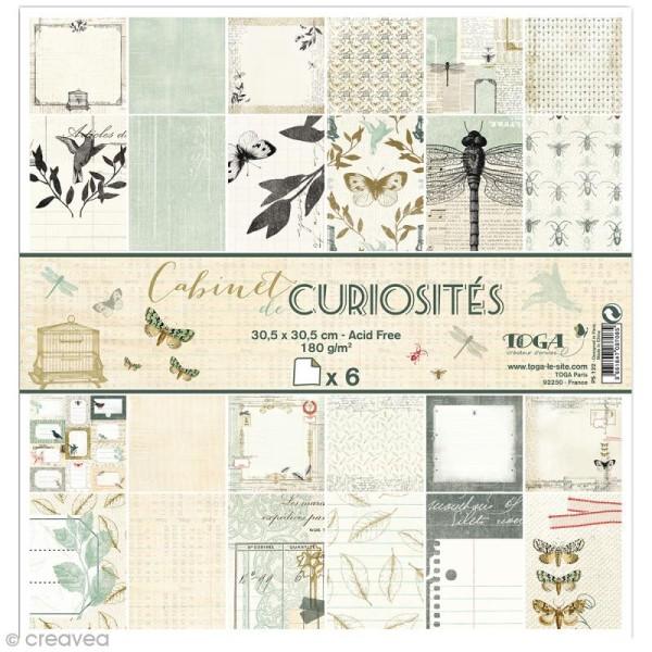 Papier scrapbooking Recto/Verso Cabinet de curiosités - Set de 6 feuilles - 30,5 x 30,5 cm - Photo n°1